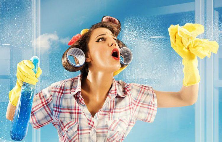 Spar Dir die vielen Reinigungsmittel