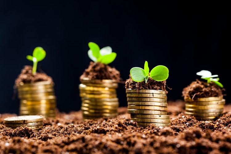 Geld vermehren durch Tagesgeld
