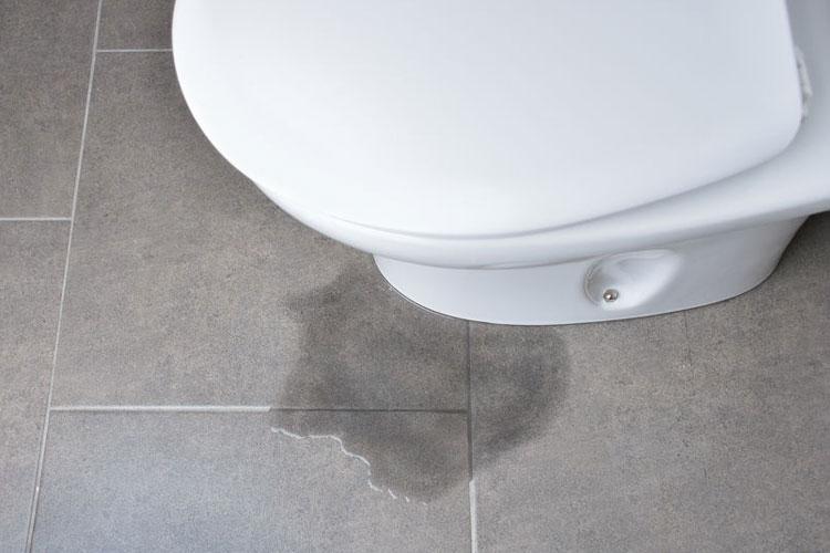 Spart euch verstopfte Toiletten – Was darf alles nicht rein?